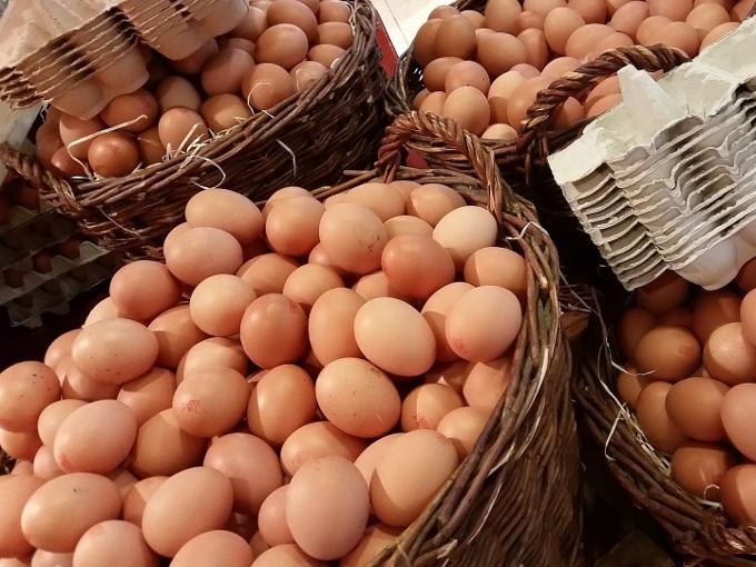 ovos-de-galinha