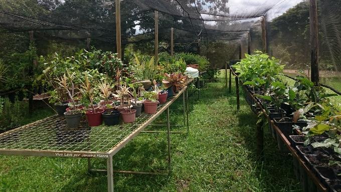 fazenda de produtos agroecologicos