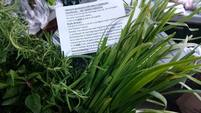 plantas alimenticias nao convencionais