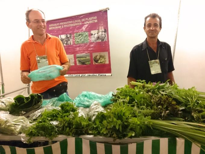 plantas medicinais feira cidade administrativa