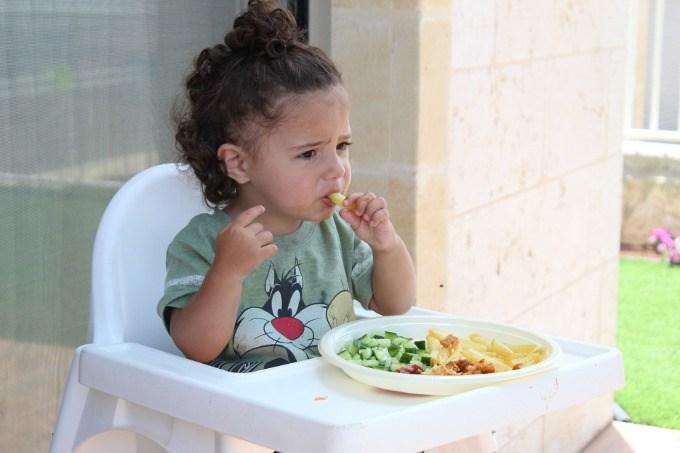 alimentacao infantil blw